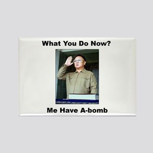 Kim Jung Il - What You Do Now? Rectangle Magnet