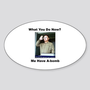 Kim Jung Il - What You Do Now? Oval Sticker