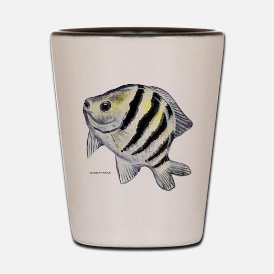 Sergeant Major Fish Shot Glass