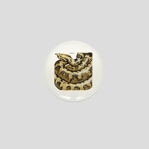 Anaconda Snake Mini Button