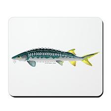 White Sturgeon fish Mousepad