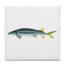 White Sturgeon fish Tile Coaster