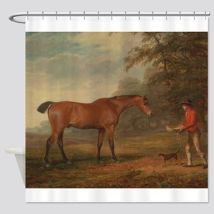 Vintage Painting of a Bay Horse Shower Curtain