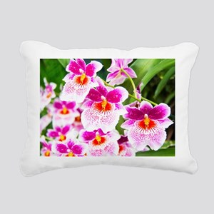 Cattleya White And Pink Orchids Rectangular Canvas
