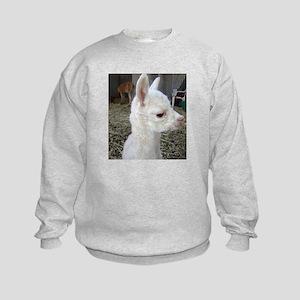 What's Up Alpaca Jumper Sweater