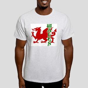 Wales Ash Grey T-Shirt