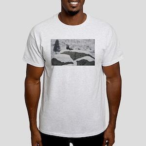 Calling You Ash Grey T-Shirt
