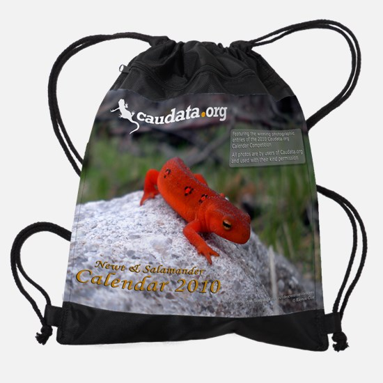 Red-Spotted Newt - Notophthalmus vi Drawstring Bag