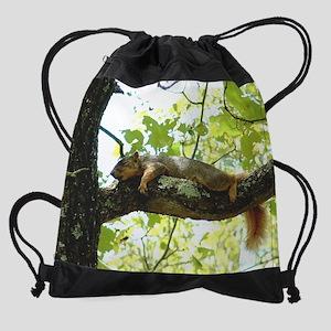 2-apron lazyasssquirrel 2 Drawstring Bag
