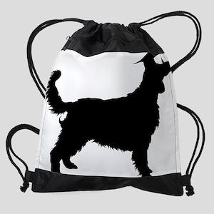 Welsh Springer Spaniel3 Drawstring Bag