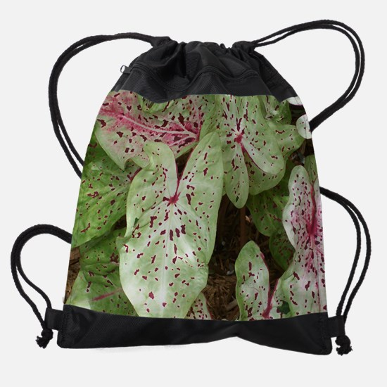 Caladium.jpg Drawstring Bag