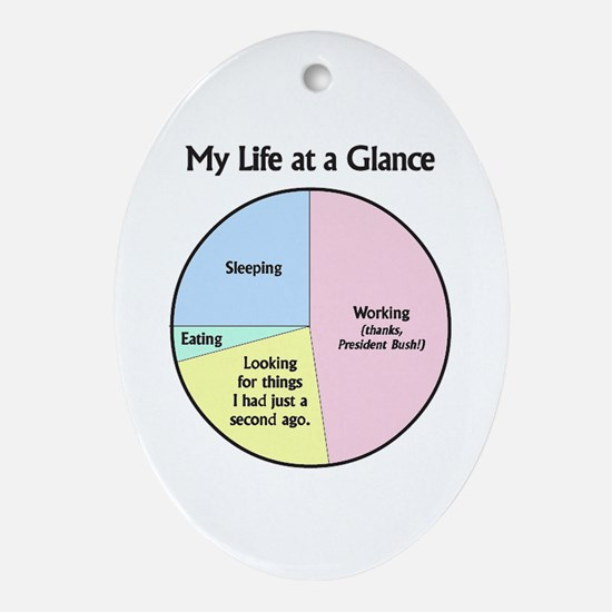 My Life at a Glance Oval Ornament