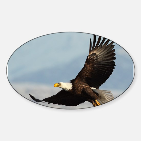 Eagle Flight Decal