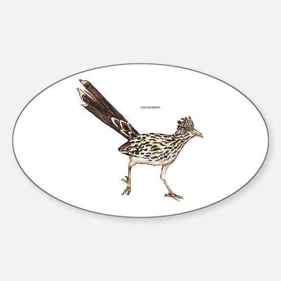 Roadrunner Desert Bird Sticker (Oval)