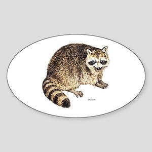 Raccoon Coon Animal Sticker (Oval)
