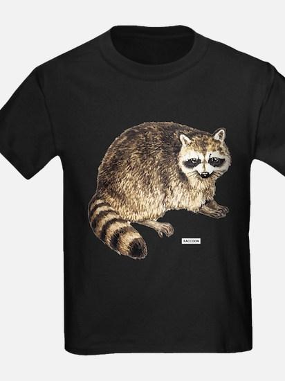 Raccoon Coon Animal T