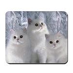 White Persian Cats Mousepad