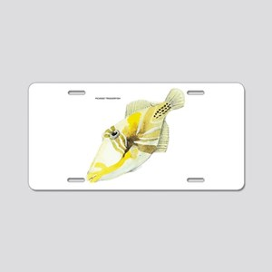 Picasso Triggerfish Fish Aluminum License Plate