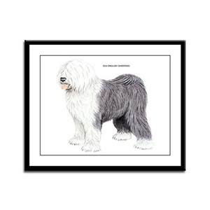 Old English Sheepdog Dog Framed Panel Print
