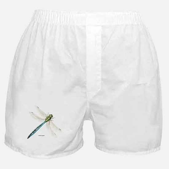 Green Darner Insect Boxer Shorts