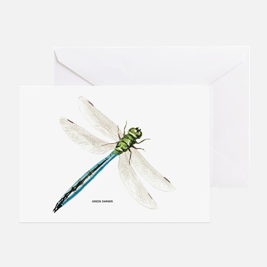 Green Darner Insect Greeting Card
