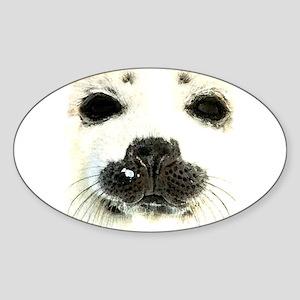 harp seal 1 Oval Sticker