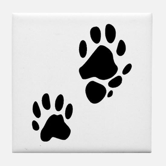 Ringtail Tracks Tile Coaster