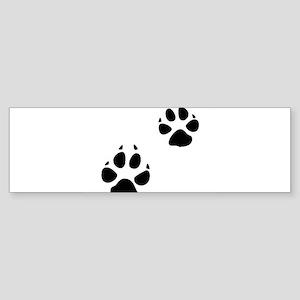Coyote Tracks Bumper Sticker
