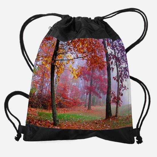 fall16x20 Drawstring Bag