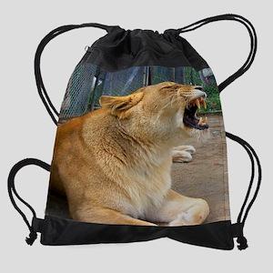 100_4954 Drawstring Bag