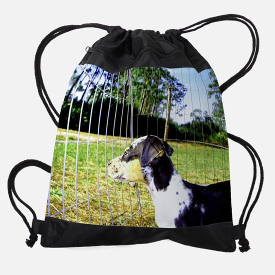 100_09512.jpg Drawstring Bag