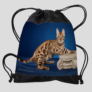 12 Drawstring Bag