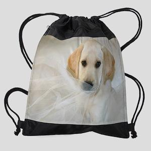 Lab5 Drawstring Bag