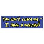 You Don't Scare Me Macaw Bumper Sticker