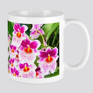 Cattleya White And Pink Orchids Mug