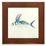 Roosterfish fish Framed Tile