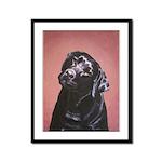Black Labrador Retriever Portrait Framed Print
