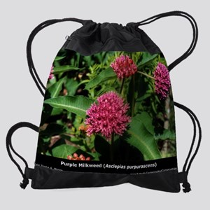 pc2-10-apur Drawstring Bag
