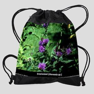 pc2-12-ironw Drawstring Bag