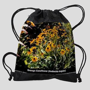 pc4-10-rfulgida Drawstring Bag