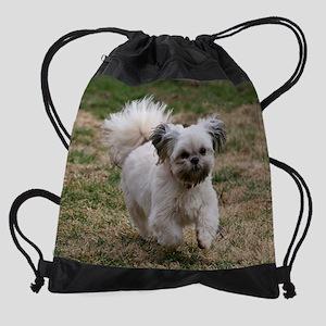 IMG_8120as Drawstring Bag