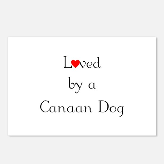 Loved by a Canaan Dog Postcards (Package of 8)