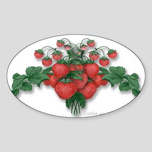 Strawberries! Sticker (Rect.) Sticker