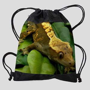 Gecko2_Mousepad Drawstring Bag