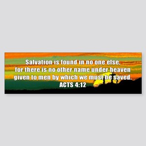 Acts 4:12 Bumper Sticker