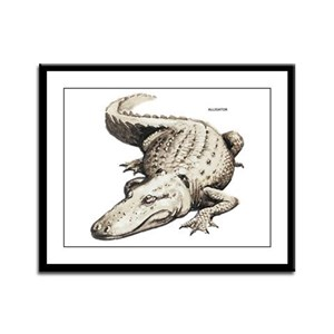 Alligator Gator Animal Framed Panel Print