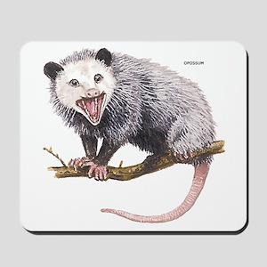 Opossum Possum Animal Mousepad