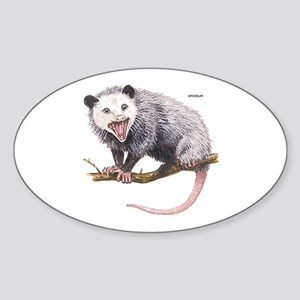 Opossum Possum Animal Sticker (Oval)