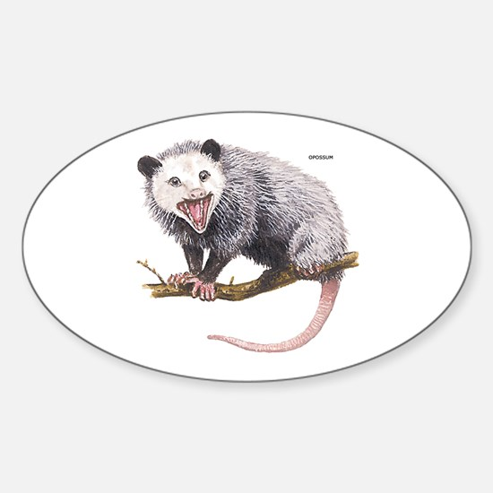 Opossum Possum Animal Sticker (Oval)