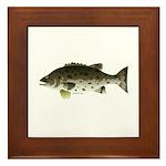 Giant Black Sea Bass fish Framed Tile